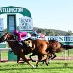 wellington horse racing tips