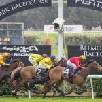 belmont horse racing tips
