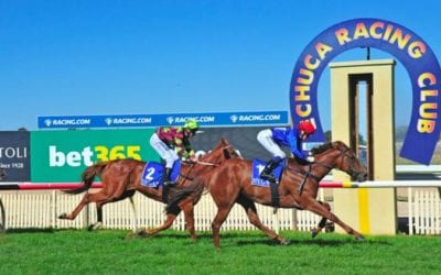 echuca horse racing tips