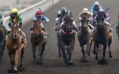 27/5/20 – Wednesday Horse Racing Tips for Sha Tin