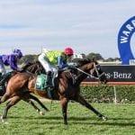 warrnambool horse racing tips