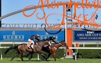 17/10/20 – Saturday Horse Racing Tips for Morphettville